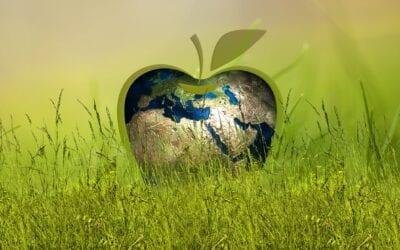 Hållbar utveckling börjar i hållbara insikter